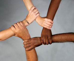 pic-diversite